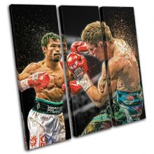 Boxing Pacquiao Hatton Sports - 13-1904(00B)-TR11-LO